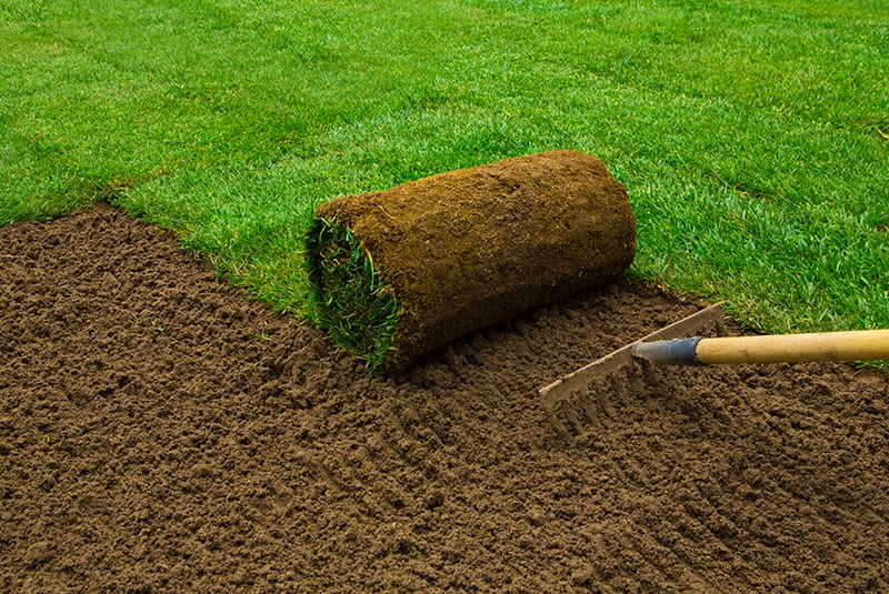 Commercial Landscaping In Tampa & Beyond